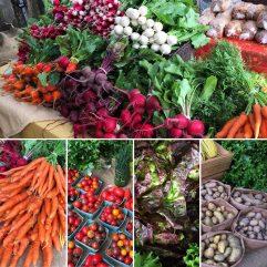 BC Farm Produce